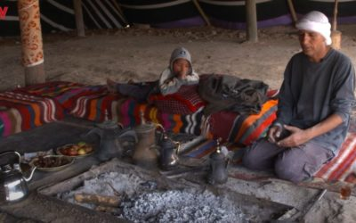 Geniet van Israel: Op bezoek bij de Bedoeïenen