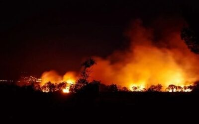 Israël stuurt hulp terwijl Cyprus bestrijdt 'ergste bosbrand in de geschiedenis'
