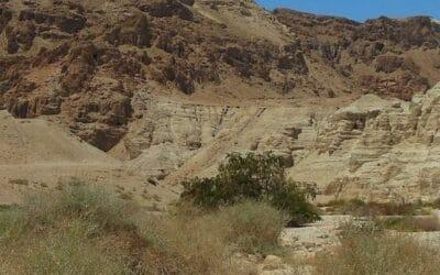 Nieuwe fragmenten Dode Zeerol ontdekt