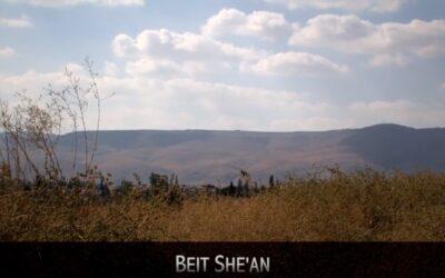 Beit She'an & Capernaum