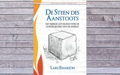 De Steen des Aanstoots – Lars Enarson