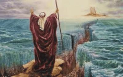 Aardbeving brengt de Rode Zee in beroering