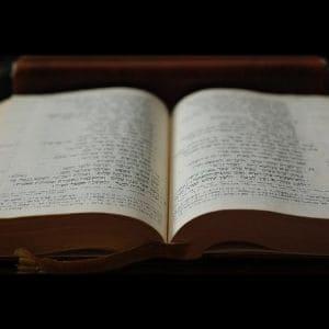 The Chronological Gospels Bible door M. Rood