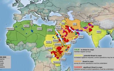 Waarom is Israël een van de veiligste plekken op aarde?